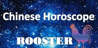 daily chinese horoscope rooster 2nd july 2019