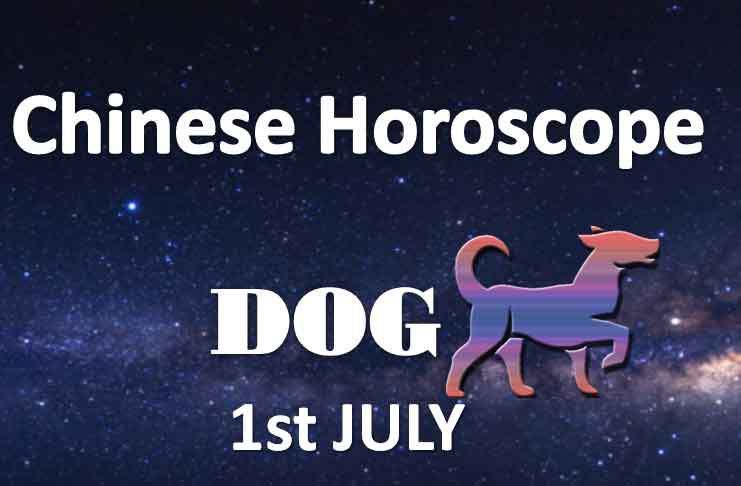 daily chinese horoscope dog 1st july 2019