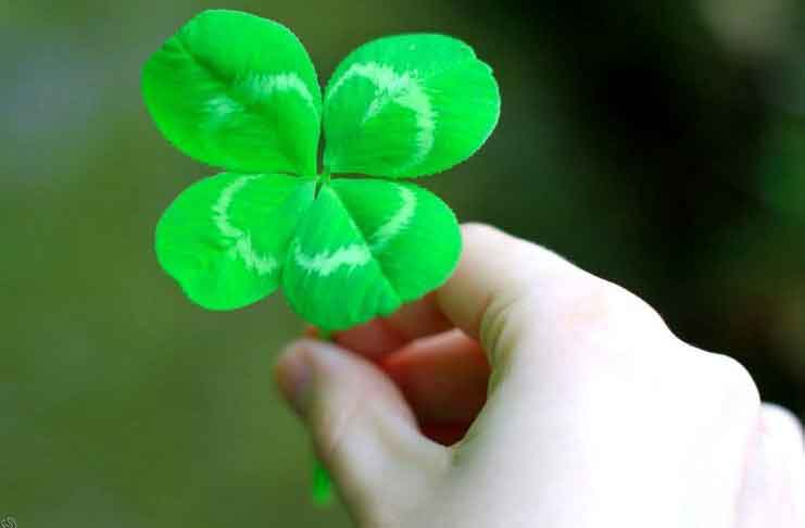 70 Phrases about Attracting Luck on the Way to success
