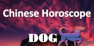 daily chinese horoscope of dog 15th july 2019