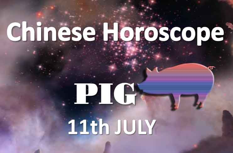 daily chinese pig horoscope 11th july 2019