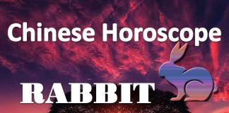 daily chinese horoscope of rabbit 15th july 2019