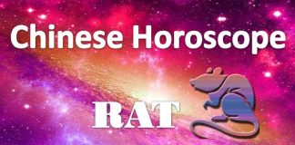 daily chinese rat horoscope 13th july 2019