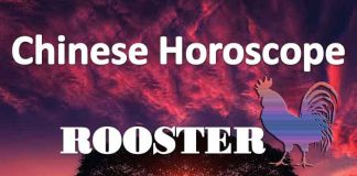 daily chinese horoscope of rooster 15th july 2019