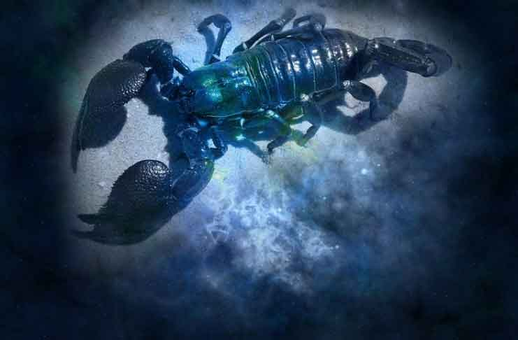 Scorpio Horoscope in the Month of August 2019